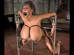 BDSM art showing babes with big boobs in all sorts of bondage