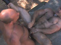 Muscular Military Men (HD)