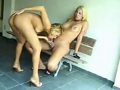Blondie Tgirl love wild rectal fuck