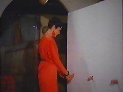 La Professoressa Erotica (1979)