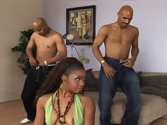 Black Beauty Vivica Coxx