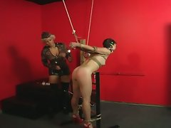 Horny military mistress bounds and tortures hot brunette