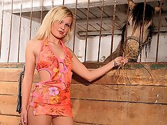 A teenage girl is feeding her horse in the stables when a guy comes...