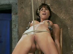 Tiny Gia DiMarco suffers though a classic HOM tie.  This is old...