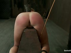 Charlie Anne rides the horse to be fucked and fucked with. Flogging,...