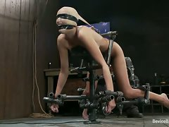 Hot porn girl gets bound like a dog, humiliated and fucked by a...