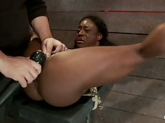 Beautiful ebony Ashley Star fights against her bondage and Matt in...