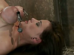 Girl next door, trap in sub basement, bound, bent, and stretched to...