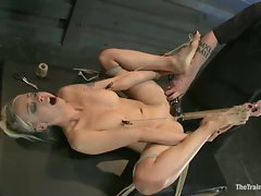 Slave training, overcoming the cattle prod, a category 5 suspension,...