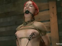 There is brutal bondage, predicament bondage, heavy impact, extreme...