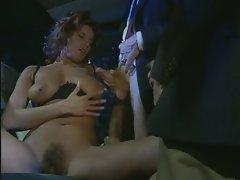 Deborah Welles Arabica