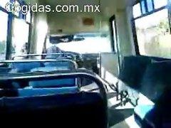 Cponcho manda su primer aporte a cogidas.com.mx