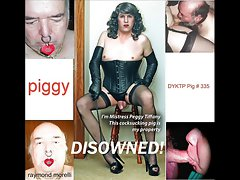 exposing party, my toy boys, vixens and bloody stupid subs